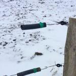 Электрический ток для профилактики краж скота используют сельчане в СКО