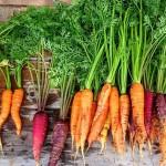 Почему в Астане морковь дороже, чем в Шымкенте – ответ Минсельхоза