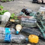 Единственное село в Казахстане, где наладили сортировку бытовых отходов, находится в Павлодарской области