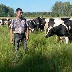 Сумма финансирования семейных молочно-товарных ферм  увеличена до 155 млн тенге