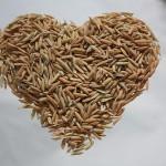 Производство риса в Казахстане сократилось на 26%