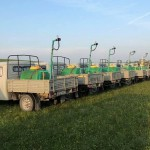 В РК начаты работы по борьбе с саранчовыми вредителями