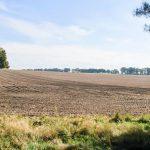 В Казахстане планируют изменить порядок предоставления сельхозземель
