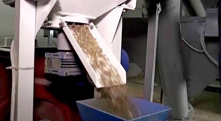 Фото: кадр из видеосюжета телеканала МТРК