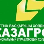 Около 8% кредитов «КазАгро» не выплачивались более 90 дней