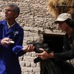 Инновации в борьбе с устойчивостью к противомикробным препаратам пришли в Центральную Азию
