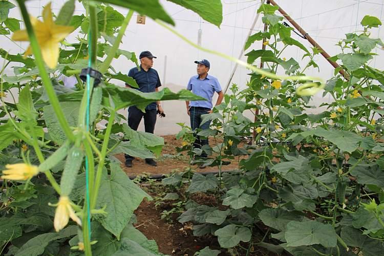Фото: пресс-служба Палаты предпринимателей Актюбинской области