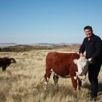 Карагандинские фермеры профинансированы на закуп  3,5 тысяч голов племенного КРС