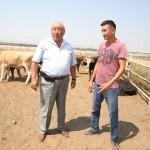 СПК в Алматинской области делает ставку на мясное животноводство