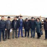 Бесплатно обучают коневодству на Востоке Казахстана