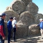 В ВКО провели бесплатный семинар для пастбищных хозяйств