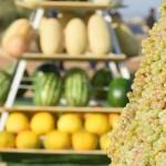 450 млрд тенге достиг объём валовой продукции сельского хозяйства в Туркестанской области