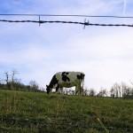 КХ продаёт земельный участок, зарегистрированный в Байконурском районе, КХ, зарегистрированному в Целиноградском районе. Какие отчёты и налоги при этом нужно сдать?