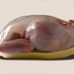 Мясо птицы может сравняться по цене с говядиной