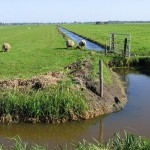 Какие документы и куда можно сдать по поводу субсидий на обводнение пастбищ?