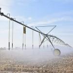 Американскую технологию дождевого полива внедрили в Туркестанской области