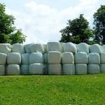 В Акмолинской области заготавливают сенаж по высокоэффективной европейской технологии