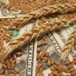 Июльский отчёт FAS USDA: снижение производства, торговли и потребления пшеницы не уменьшают её запасов