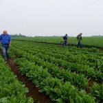 12 семинаров для Павлодарских фермеров прошло в текущем году