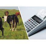 Для продажи скота нужно ли приобретать кассовый аппарат? И каков процент налога от продажи КРС?