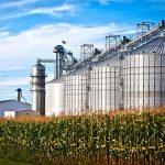 Производство биоэтанола планируется запустить в 2020 году