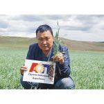 Технология высоких урожаев зерновых колосовых в условиях низкой влагообеспеченности. Мировая практика.