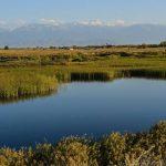 Казахстан планирует доставлять воду в южные регионы из Таджикистана в обмен на электроэнергию