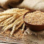 Теневой рынок зерна в Казахстане оценили почти в 1 млн тонн