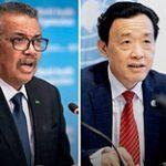 Настало время проявить солидарность: совместное заявление ФАО, ВОЗ и ВТО