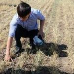 ФАО начала проводить в Казахстане исследования в области управления рисками стихийных бедствий