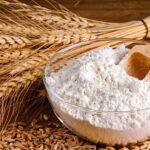 Казахстан: Продкорпорация остановила форвардные закупки сельхозпродукции