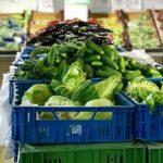 Наталья Мархиева: Фермерам надо перестать бояться современной розницы