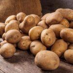 Поправки к Стандарту на семенной картофель обсудили эксперты мирового уровня