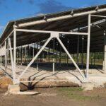 Три молочно-товарных фермы построят в Айыртауском районе СКО