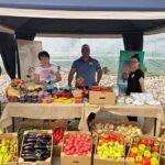 «Фермеры Чилика»: Наш позитивный опыт кооперации может быть использован во всех регионах страны
