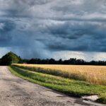 Растениеводы могут застраховать поля от дождей