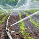 Сенаторы намерены помочь жамбылским аграриям решить проблемы с поливной водой