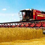 В каких регионах Казахстана уже собирают новый урожай