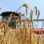 Как Костанайская область готовится к уборке урожая, рассказал Архимед Мухамбетов