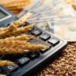 Какие выгоды получил Казахстан на рынке зерна из-за пандемии – Зерновой союз