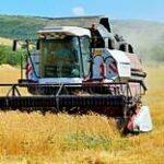 В Казахстане убрано 96,2% зерновых, намолочено 18,9 тыс. тонн зерна