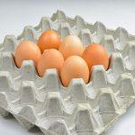 Из-за птичьего гриппа Казахстан недополучит миллиард яиц