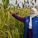 «Лучший способ вырастить сад – поручить это садовнику»: истории сельских женщин из Казахстана и Таджикистана