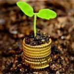 Сельхозкооперативам доступно кредитование по ставке 6% на срок до 7 лет – МСХ РК