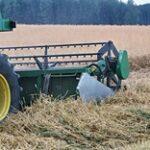 Уборка на финише, а цены на зерно всё выше и выше