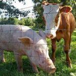 МСХ РК: Казахстан имеет благополучный статус по 45 видам особо опасных болезней животных