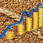 Казахстанское зерно пользуется повышенным спросом